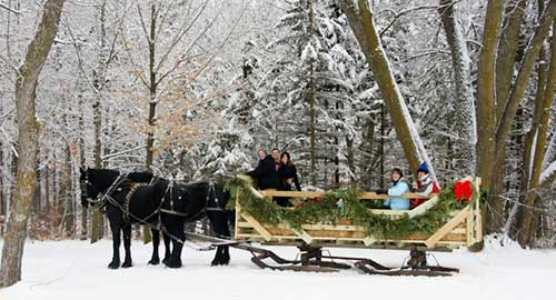Group Horse Drawn Sleigh Ride