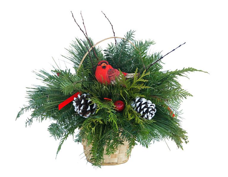 christmas cardinal centerpiece - Live Christmas Trees