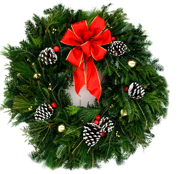 ... Christmas Fancy Designer Wreath | Plants Beautiful Christmas Trees